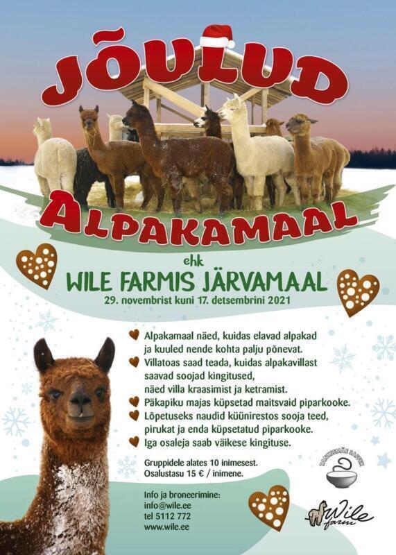 Jõulud Alpakamaal 2021